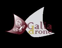DGALIADRONE-SERVICIOS-AEREOS-CON-DRONES-PEQ